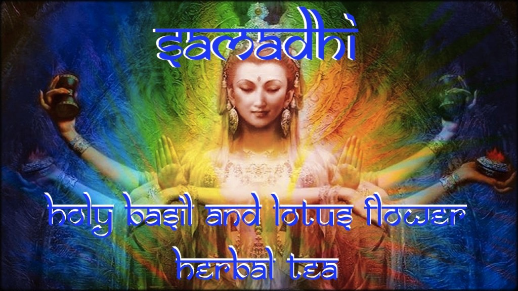 samadhi holy basil and lotus flower herbal tea bottle gourd herbs meditation