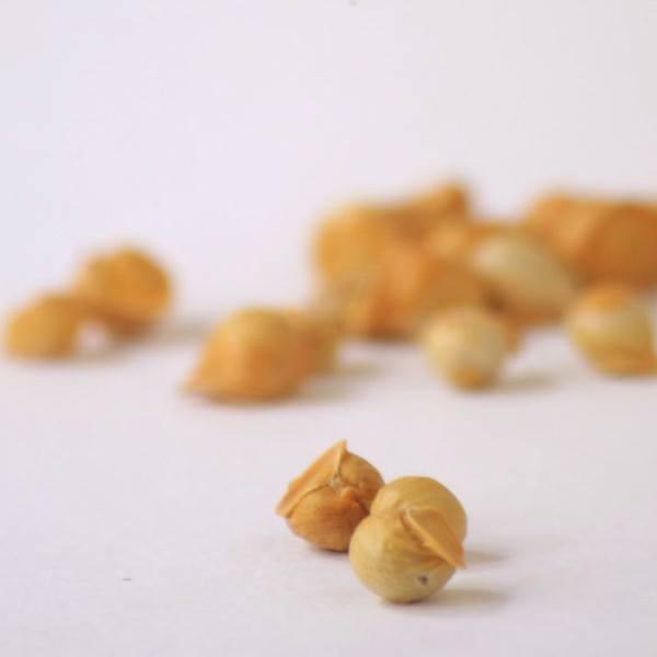 snow mountain himalayan garlic